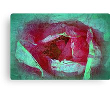 Texture Pink Rose Canvas Print