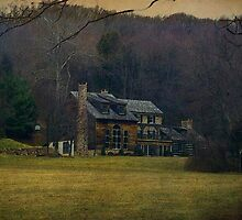 Just a log cabin ... by Judi Taylor
