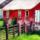Rustic Red by Nadya Johnson
