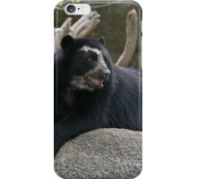 Pretty Spectacled Bear iPhone Case/Skin