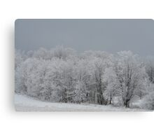 Redreaming White Tree Friends Canvas Print