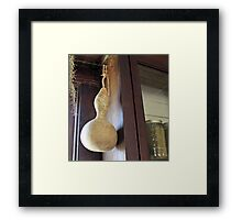 Gourd With Pickles Framed Print