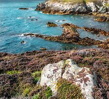Rhoscolyn Head by Adrian Evans