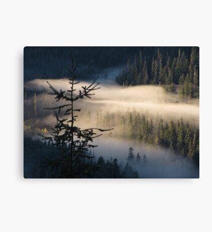 Morning Layer Canvas Print