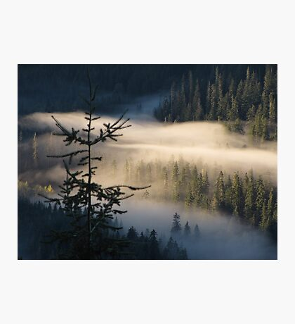 Morning Layer Photographic Print