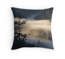 Morning Layer Throw Pillow