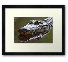 Alligator Grin Framed Print