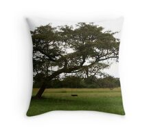 A lonely swing Throw Pillow