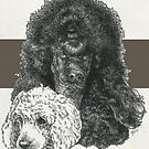 Poodle Father & Son (standard) by BarbBarcikKeith