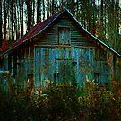 Franklin Barn by Chelei
