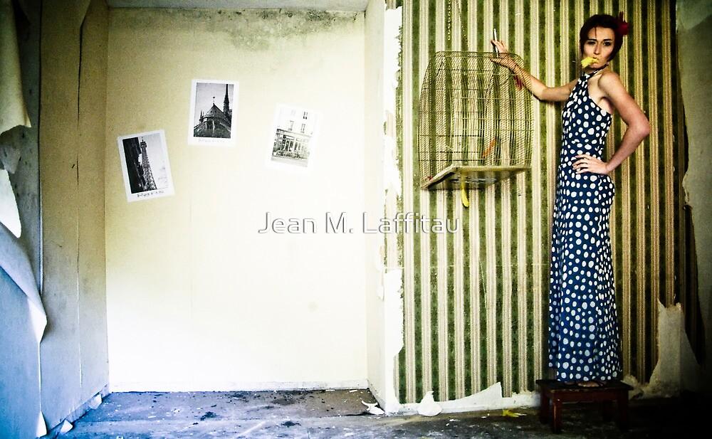 Little Birdy by Jean M. Laffitau