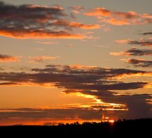 Looking West by Michelle  Wrighton