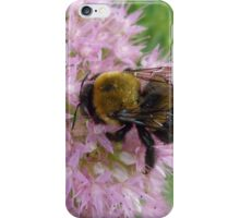 Bee At Large iPhone Case/Skin