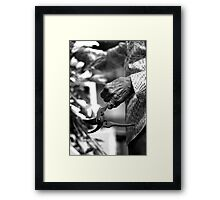 A life with flowers ... II Framed Print