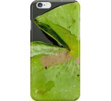 LilyPad iPhone Case/Skin