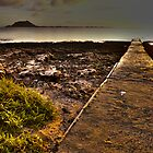 Wakiki Beach by davidautef