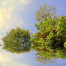 Summer Reflections ! by Elfriede Fulda