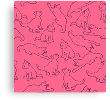 Kitty playing on pink Canvas Print