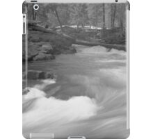 Snow in the woods iPad Case/Skin