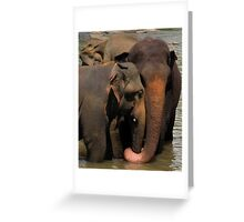 Elelove, Kandy, Sri Lanka  Greeting Card