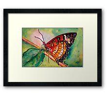Butterfly Song Framed Print