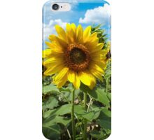 Summertime View iPhone Case/Skin