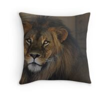 Male Lion  Throw Pillow