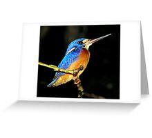 Kingfisher, Sumatra, Borneo  Greeting Card