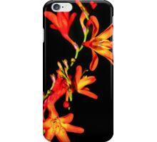 Orange on Black iPhone Case/Skin