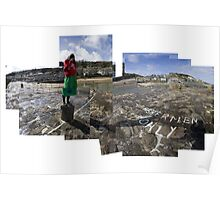 Photographing Mousehole with a Diana Camera Poster