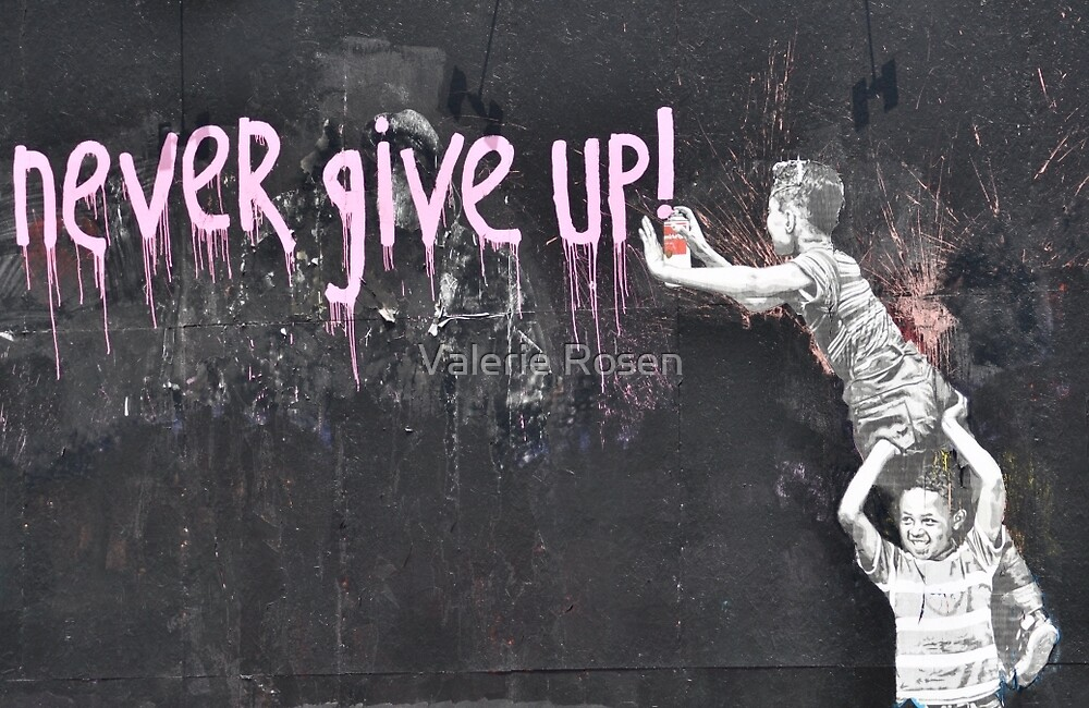 """""""never give up!"""" by Valerie Rosen"""