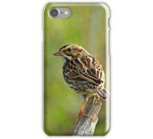 Savannah Sparrow iPhone Case/Skin