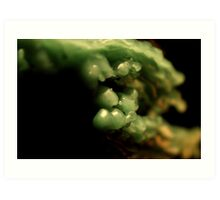 Macro wax - green clouds Art Print