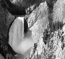Lower Falls at Yellowstone National Park by Alex Cassels