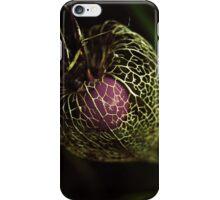 Purple cage iPhone Case/Skin