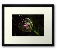 Purple cage Framed Print