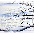 Cold-poem by Olga