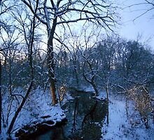Winter Twilight at the Creek--Westward by MarjorieB
