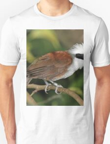 Unbelievable White-crested Laughingthrush T-Shirt