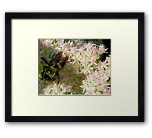 Bumble Bee       ^ Framed Print