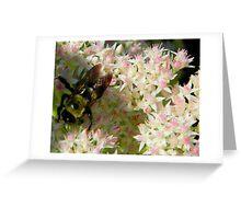Bumble Bee       ^ Greeting Card