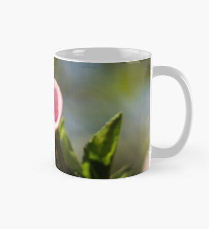9315 apple Mug