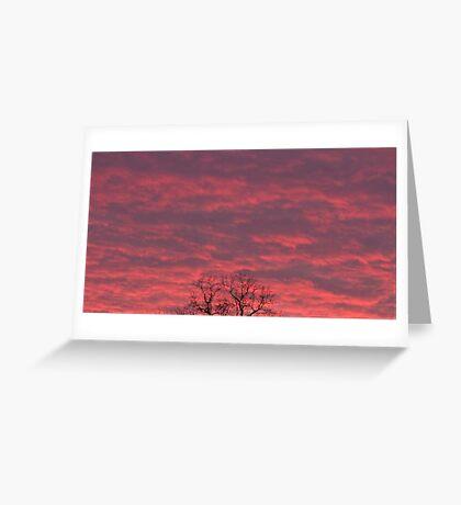 December sky Greeting Card