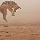 Flying in fog by Owed To Nature