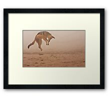 Flying in fog Framed Print