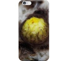 Cactus bud iPhone Case/Skin
