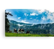 Cows in the Clouds Canvas Print