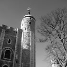 The White Tower by Alison Ward