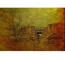 Barnard Castle Photographic Print