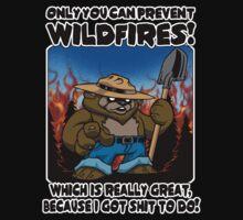 Wildfires!!! by scott sirag